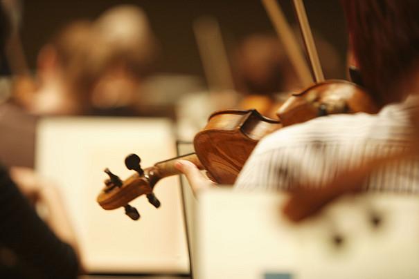 Teilansicht einer Violine